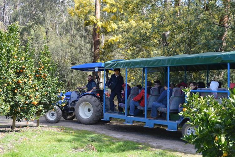 Rayners Orchard in Woori Yallock, Victoria